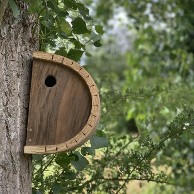 Walnut Bird Box