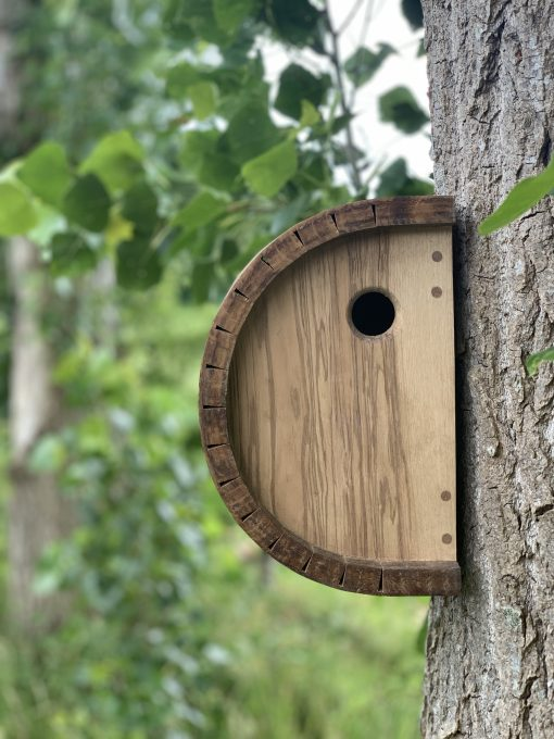Kerfed Olive Ash and Oak Bird Box